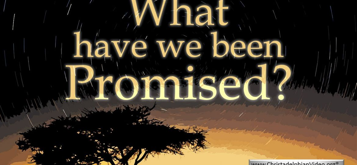 Thumb-What have we been Promised