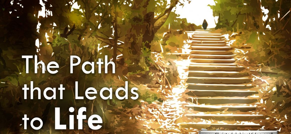 Thumb-The Path That Leads To Life