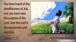 """Daily Readings & Thought for December 10th.  """"YOU HAVE SEEN THE PURPOSE OF THE LORD"""""""